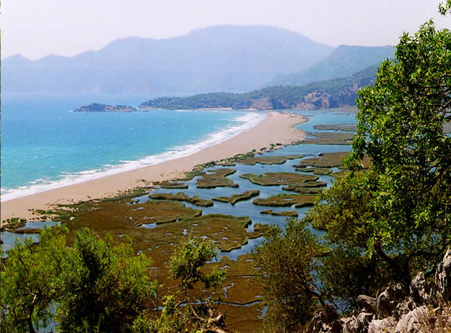 Dalyan - Kaunos - Iztuzu beach, the turtle beach